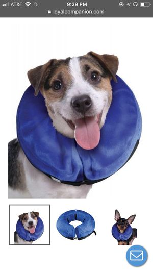 Dog blow up recovery collar for Sale in Darnestown, MD