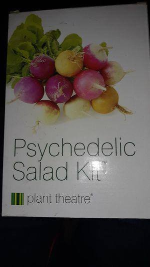 Salad kit...starter pots/seeds for Sale in Palm Harbor, FL