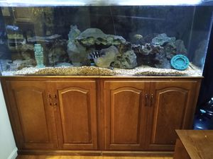 130 gal tank for Sale in Spring Valley, CA
