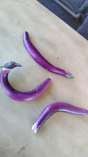 Home grown egg plant 3 for 1 dollar for Sale in Anaheim, CA