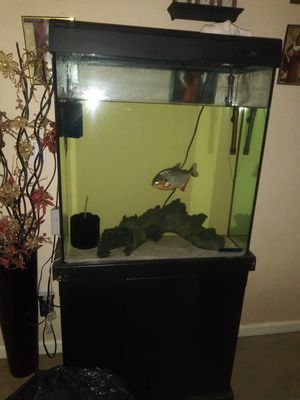 50 gallon fish tank for Sale in Richmond, CA