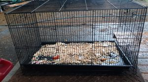 Medium or large wire cage for Sale in Puyallup, WA
