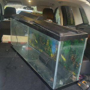 Fish Tank for Sale in Suisun City, CA