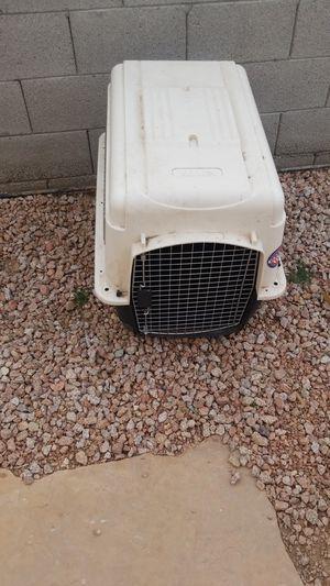 Little house dog for Sale in Phoenix, AZ