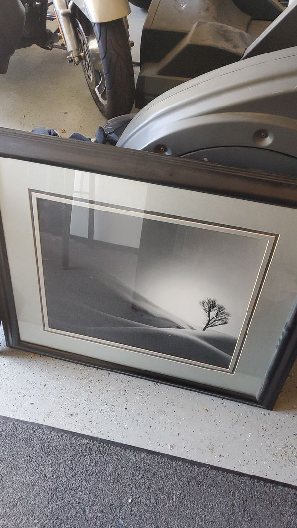 3 Nice pictures/prints in good frames.