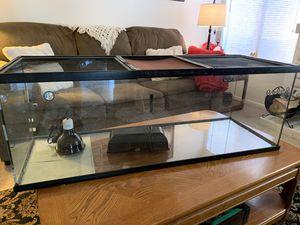 Reptile Terrarium for Sale in Chino, CA
