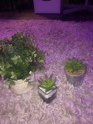Fake Plants ( set of 3) for Sale in Apopka, FL