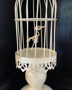 Real Bird Skelton And Cage for Sale in Richmond,  VA