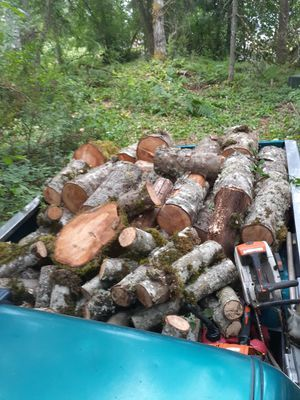 Alder firewood for Sale in Seattle, WA