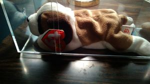 Ty beanie baby. Bernie. Dated 10\3/1996. Comes in plastic case for Sale in Cranberry Township, PA