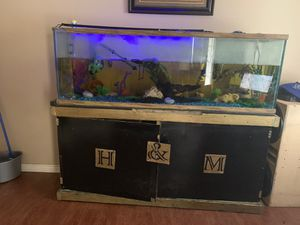 Fish tank, filter, fish & accessories for Sale in Orange, TX