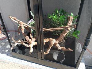 Reptile Screen Cage/Habitat for Sale in Lake View Terrace, CA