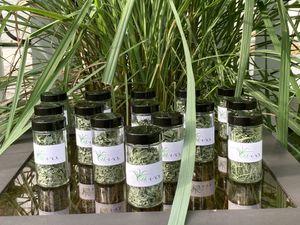 Organic Lemongrass for Sale in Tampa, FL