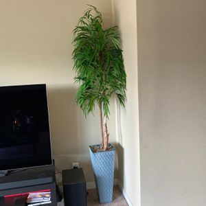 Indoor Fake Plant for Sale in Cupertino, CA