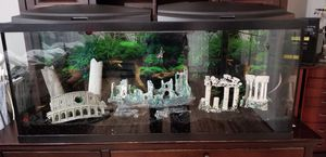 55 gallon aquarium with accessories for Sale in Douglasville, GA
