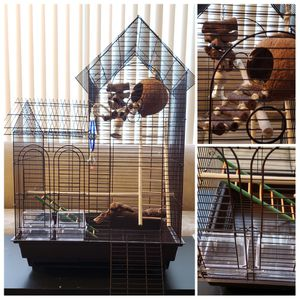 Bird Cage, bird toys, and food for Sale in West Los Angeles, CA