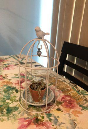 Missy Succulent Real Plant in Terra-Cota pot $10 for Sale in Chula Vista, CA