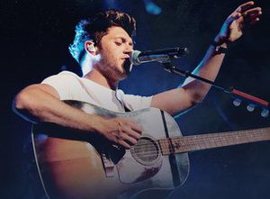 Niall Horan tickets-TONIGHT $20 for Sale in Tampa, FL