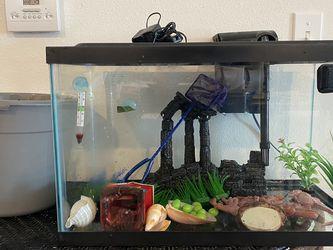 Fish Tank/aquarium & Stand 10 Gallon for Sale in Tampa,  FL