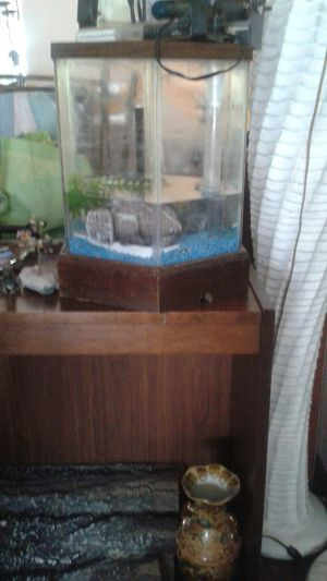 Small fish tank with light and heater for Sale in Philadelphia, PA