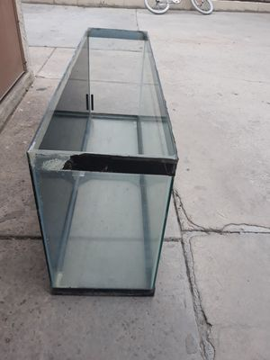 Fish tank 4ft long , 2 ft tall ,1 ft wide for Sale in Las Vegas, NV