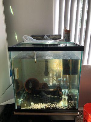 60 gallon cube aquarium complete setup $150 obo for Sale in Redlands, CA