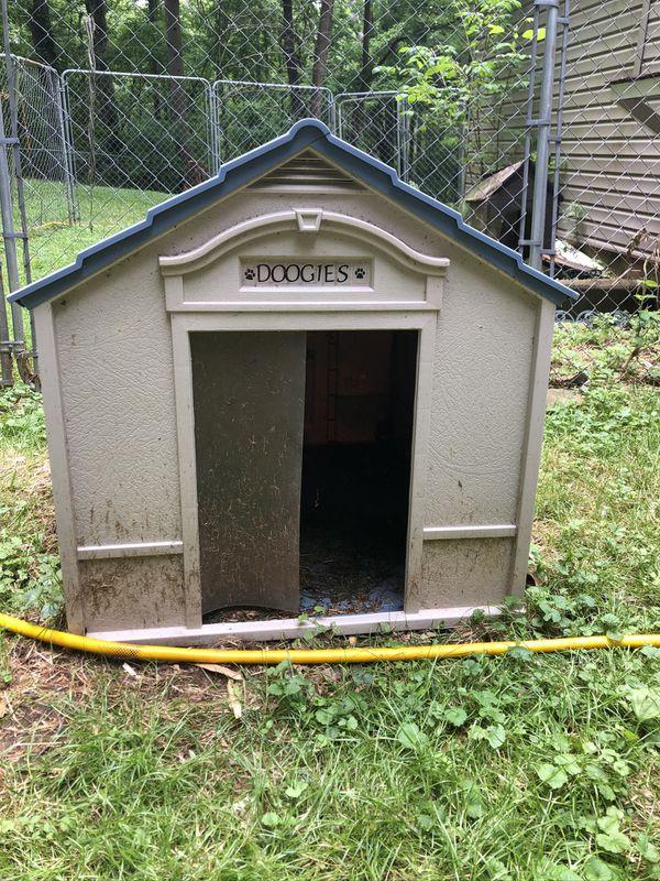 Cute dog house large