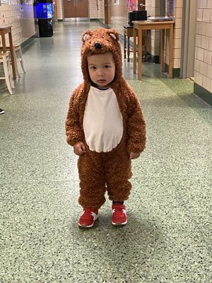 Free toddler bear costume for Sale in CT, US
