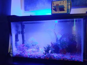 Fish aquarium for Sale in Denver, CO