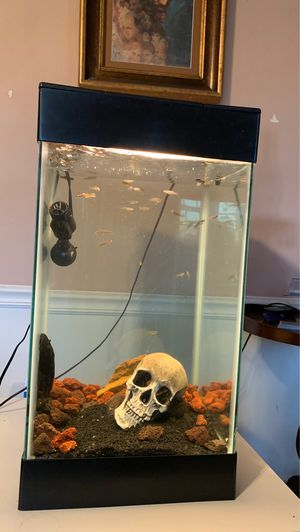 Fish tank for sale $$ for Sale in Irving, TX