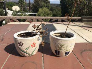 Gorgeous Mini Flower Pots. for Sale in Montclair, CA