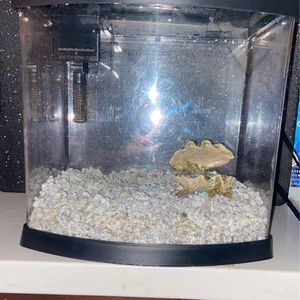 TOPFIN 5 GALLON FISH TANK PERFECT FOR CHRISTMAS! for Sale in Seattle, WA