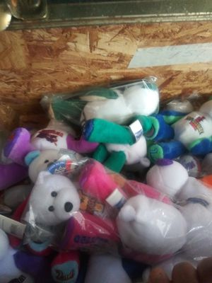 Beanie Babies with COINS for Sale in Davie, FL