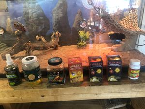 Reptile tank and tons of accessories for Sale in La Verne, CA