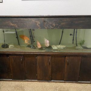 100 Gallon Fish Tank for Sale in Murrieta, CA
