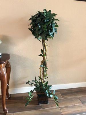 Fake plant for Sale in Corona, CA