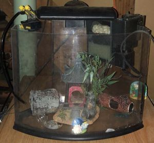5 Gallon fish tank and accessories for Sale in Strongsville, OH