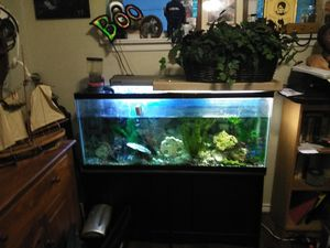 80 gallon with base for Sale in Garland, TX