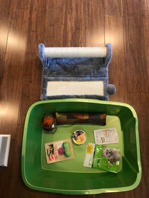 Extra Large Cat Littlerbox and Scratching Pad for Sale in Portland, OR