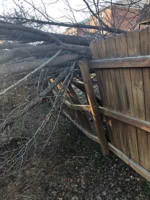 Free Firewood-3/7/19 Christiansburg for Sale in Troutville, VA