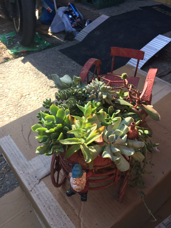 Succulent tractor planter pot