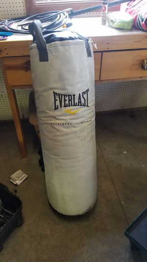 Everlast Punching Bag for Sale in OH, US