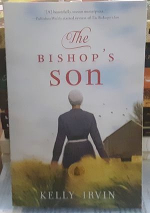 Amish Fiction ii for Sale in Canton, IL