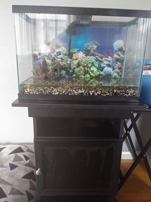 Fish tank for Sale in St. Louis, MO