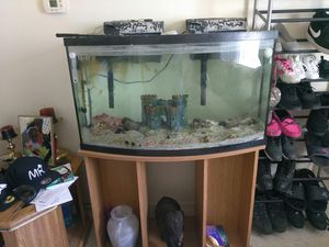 Saltwater Fish tank for Sale in Denver, CO