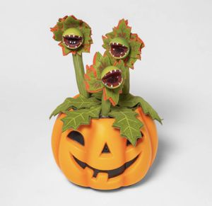 Halloween Decorative Pumpkin with Animated Dancing/Singing Vines - Hyde & EEK! Boutique for Sale in Los Angeles, CA
