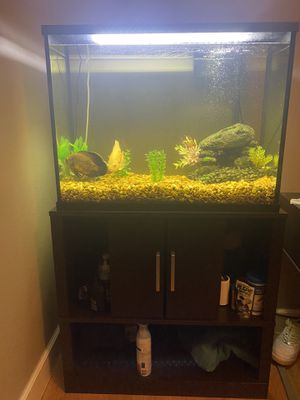 37 gallon fish tank for Sale in Orlando, FL