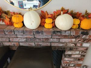 Free pumpkins for Sale in Perris, CA