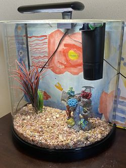 Fancy 10 Gallon Bow Front Fish Tank for Sale in Bloomington,  CA