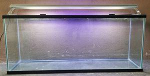 100 Gallon Aquarium/ Fish Tank / Reptile for Sale in Bell, CA